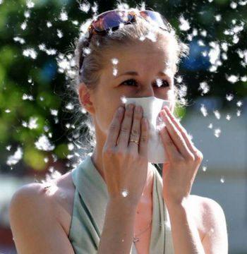 Девушка чихает от тополиного пуха
