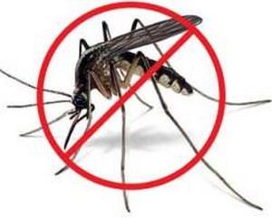 Комар с перечеркнутым кружком