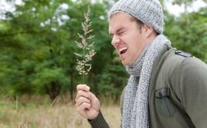 Мужчина держит в руках траву и собирается чихать