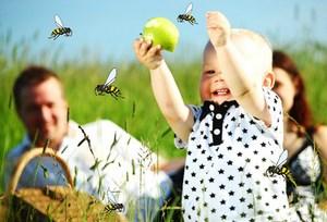 Ребенок играет с яблоком, рядом пчелы