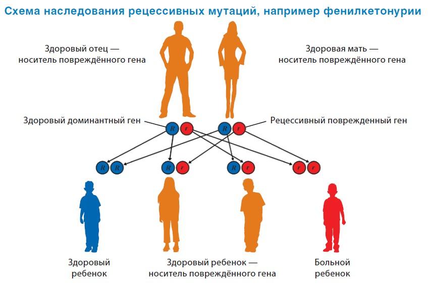 Генетическое заболевание – есть ли выход?