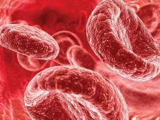 Низкий гемоглобин в крови