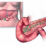 Признаки болезни поджелудочной железы. Панкреатит, сахарный диабет и рак