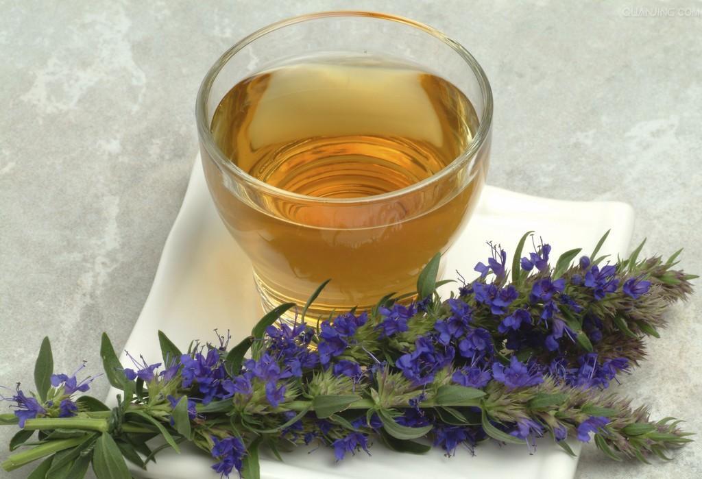Фото 18: Чай с иссопом помогает бороться с кашлем