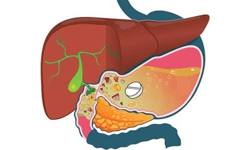 После перорального применения жирорастворимая форма тиамина достаточно быстро всасывается из пищеварительного тракта