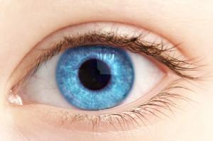 Глаза удивительный орган который позволяет нам видеть.