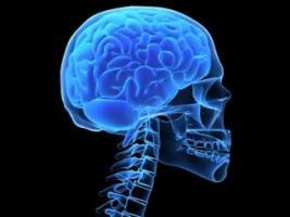 Мозг удивительный орган, давайте рассмотрим его болезни.