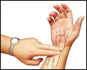 Пульс - это импульсы, возникающие при подаче крови в артерии.