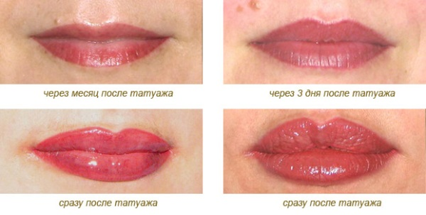 Примеры татуажа губ